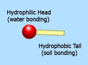 detergent molecule